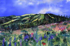 Sun Peaks Summer Vista Kendra Smith Artist